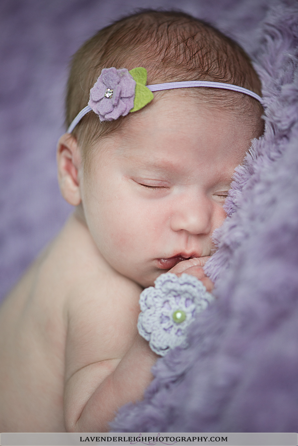 Baby Girl V | Newborn Photography | Portrait Session|  Pittsburgh Family Photographer| Pittsburgh Children
