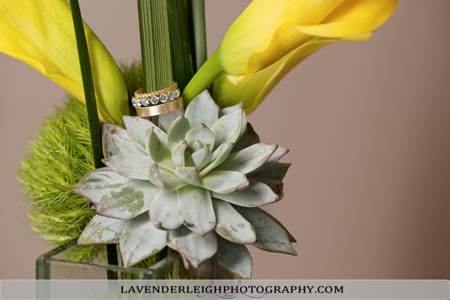 Pittsburgh Renaissance Hotel | Wedding Photographer| Pittsburgh Wedding Photographers | Lavender Leigh Photography | Blog