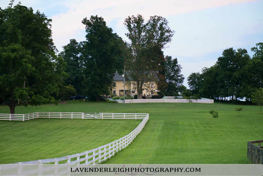 Virginia Wine Country | Travel | Pittsburgh Wedding Photographer | Pittsburgh Wedding Photographers | Lavender Leigh Photography | Blog