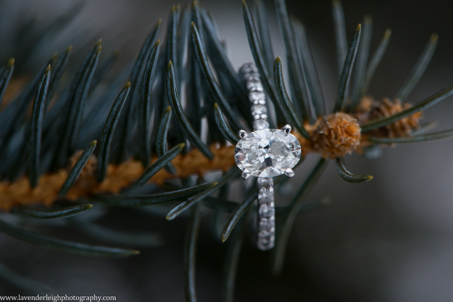 Engagement Ring | North Park Winter Engagement Session| Pittsburgh Wedding Photographer | Pittsburgh Wedding Photographers | Lavender Leigh Photography | Blog
