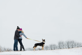 North Park Winter Engagement Session with Dog| Pittsburgh Wedding Photographer | Pittsburgh Wedding Photographers | Lavender Leigh Photography | Blog